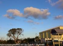 Fordia-Day-seven-Key-Largo-morning-walk-1-of-49
