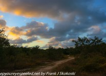 Fordia-Day-Five-Key-Largo-Dagney-Johnson-hike-1-of-29