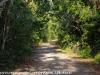 Everglades Anhinga morning walk  (17 of 42)