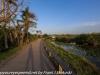 Everglades Anhinga morning walk  (7 of 42)