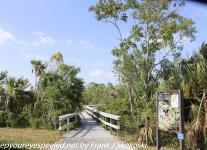 Everglades Mahogany Hammock  (1 of 17)