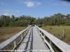 Everglades Mahogany Hammock  (2 of 17)