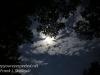full moon -11