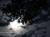 full moon -12