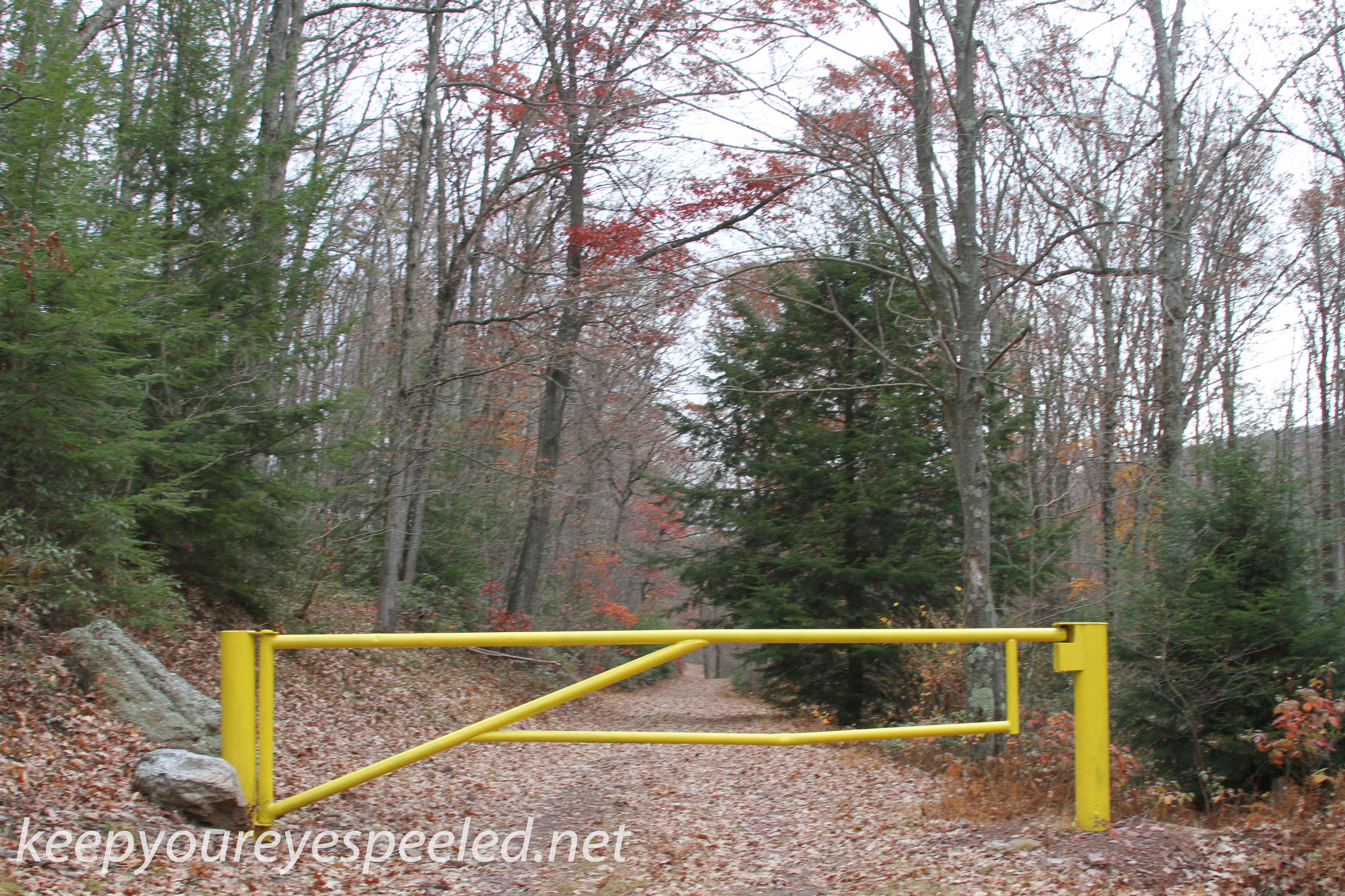 Girard Manor Lofty Reservoir hike (12 of 38)