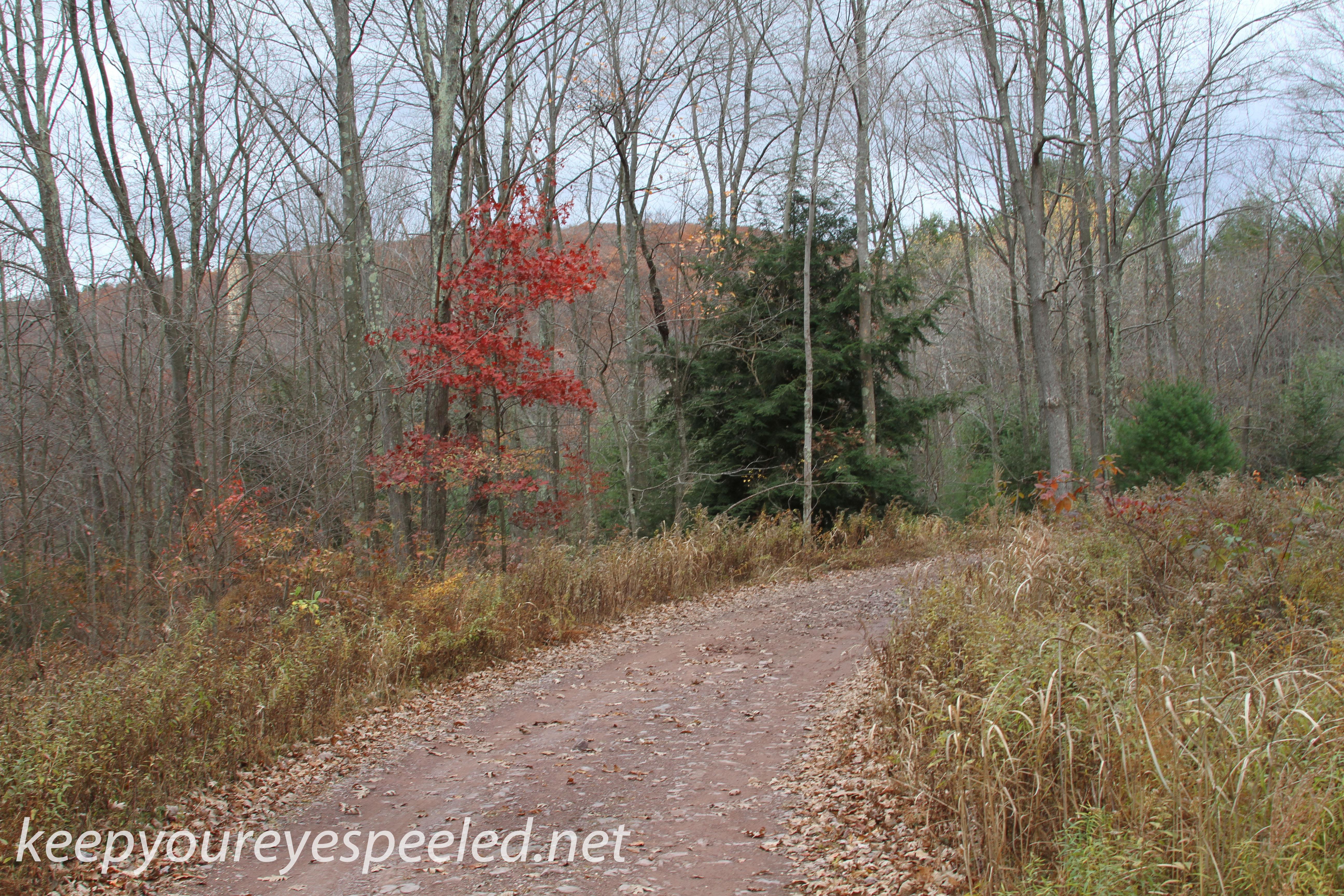 Girard Manor Lofty Reservoir hike (37 of 38)