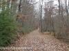 Girard Manor Lofty Reservoir hike (13 of 38)