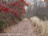Girard Manor Lofty Reservoir hike (14 of 38)