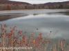 Girard Manor Lofty Reservoir hike (22 of 38)