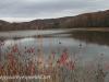 Girard Manor Lofty Reservoir hike (23 of 38)