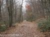 Girard Manor Lofty Reservoir hike (29 of 38)