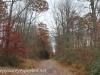 Girard Manor Lofty Reservoir hike (5 of 38)