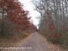 Girard Manor Lofty Reservoir hike (6 of 38)