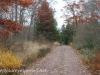 Girard Manor Lofty Reservoir hike (7 of 38)