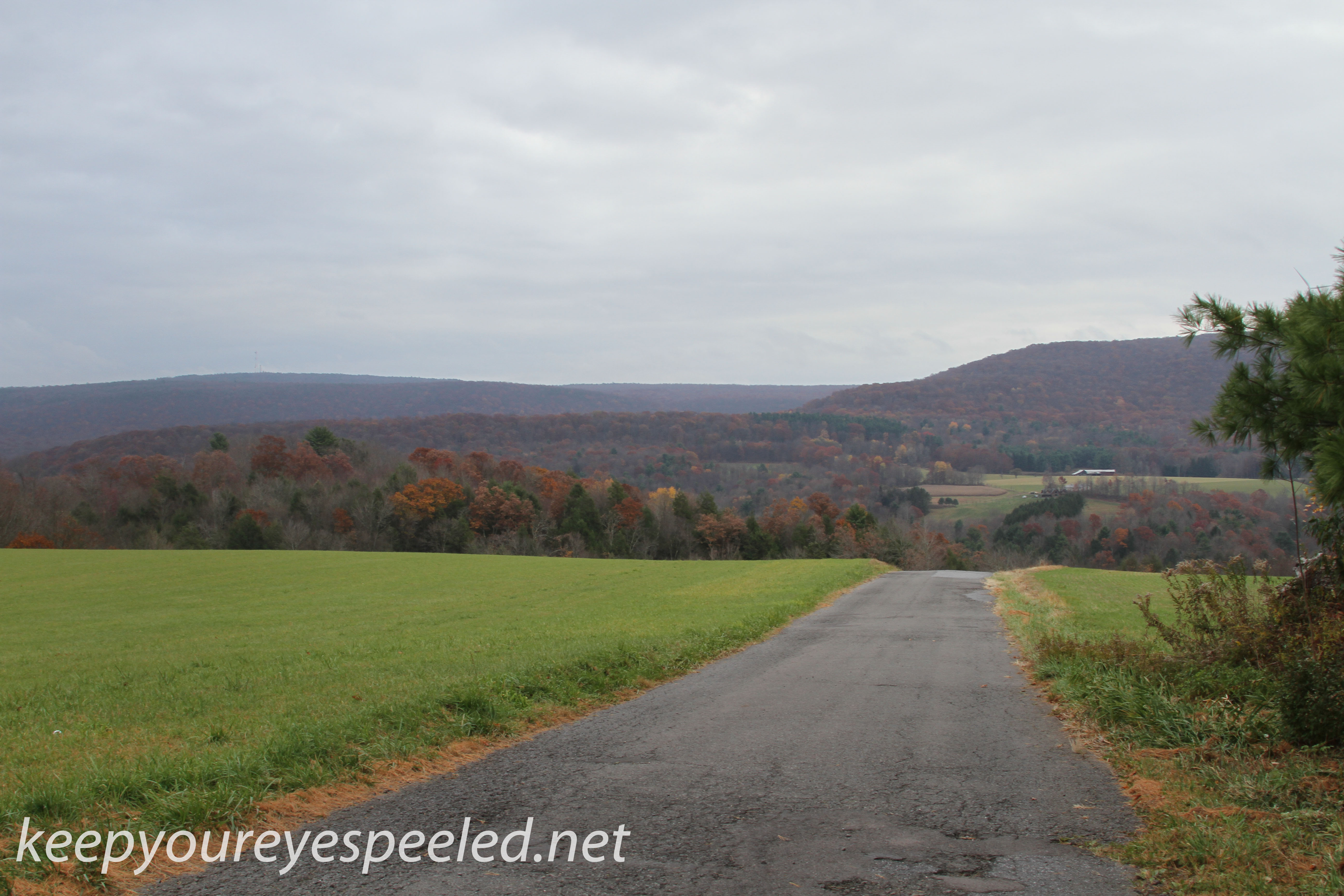 Girard Manor scenery   (1 of 16)
