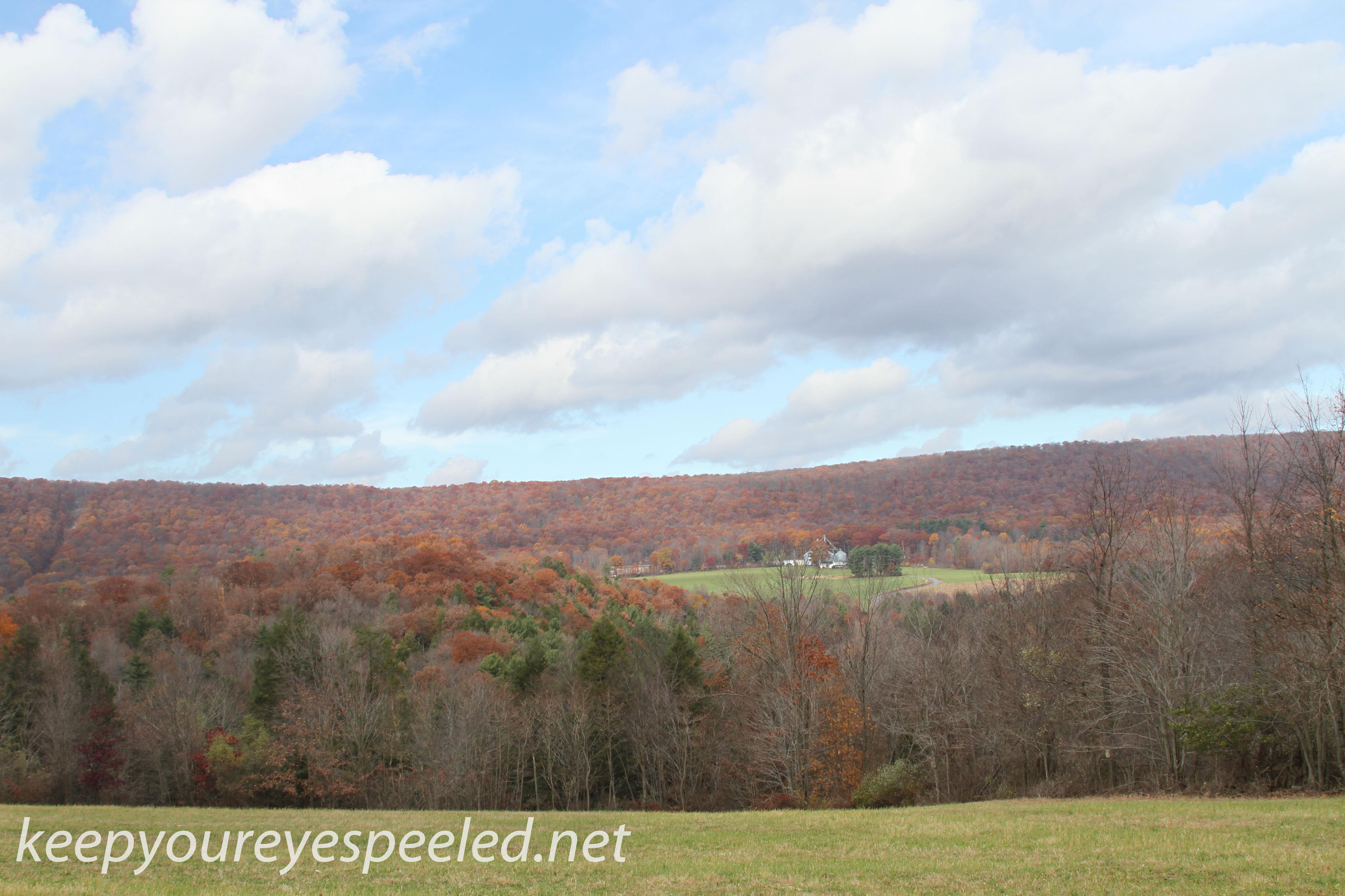 Girard Manor scenery   (11 of 16)