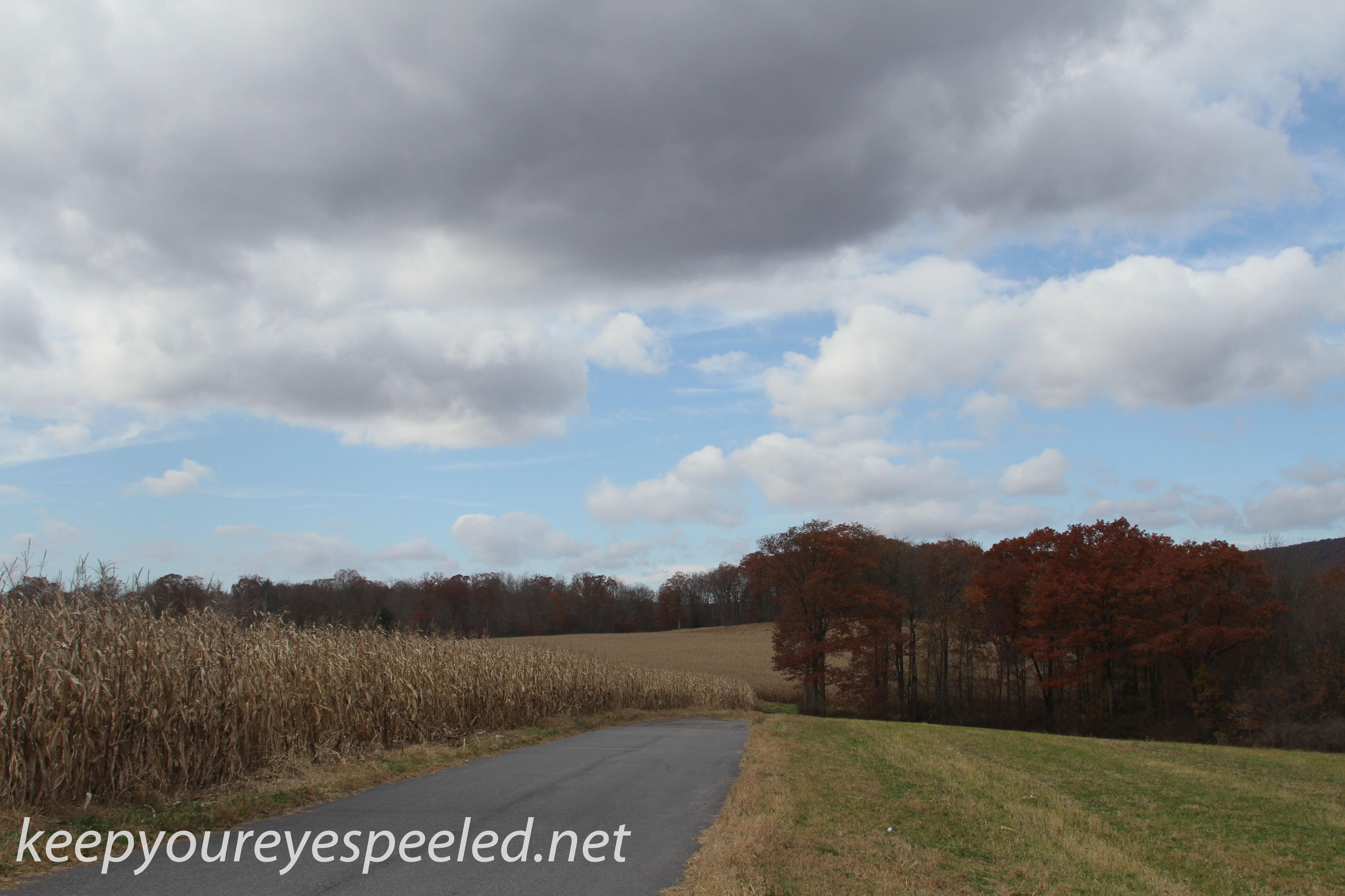 Girard Manor scenery   (12 of 16)