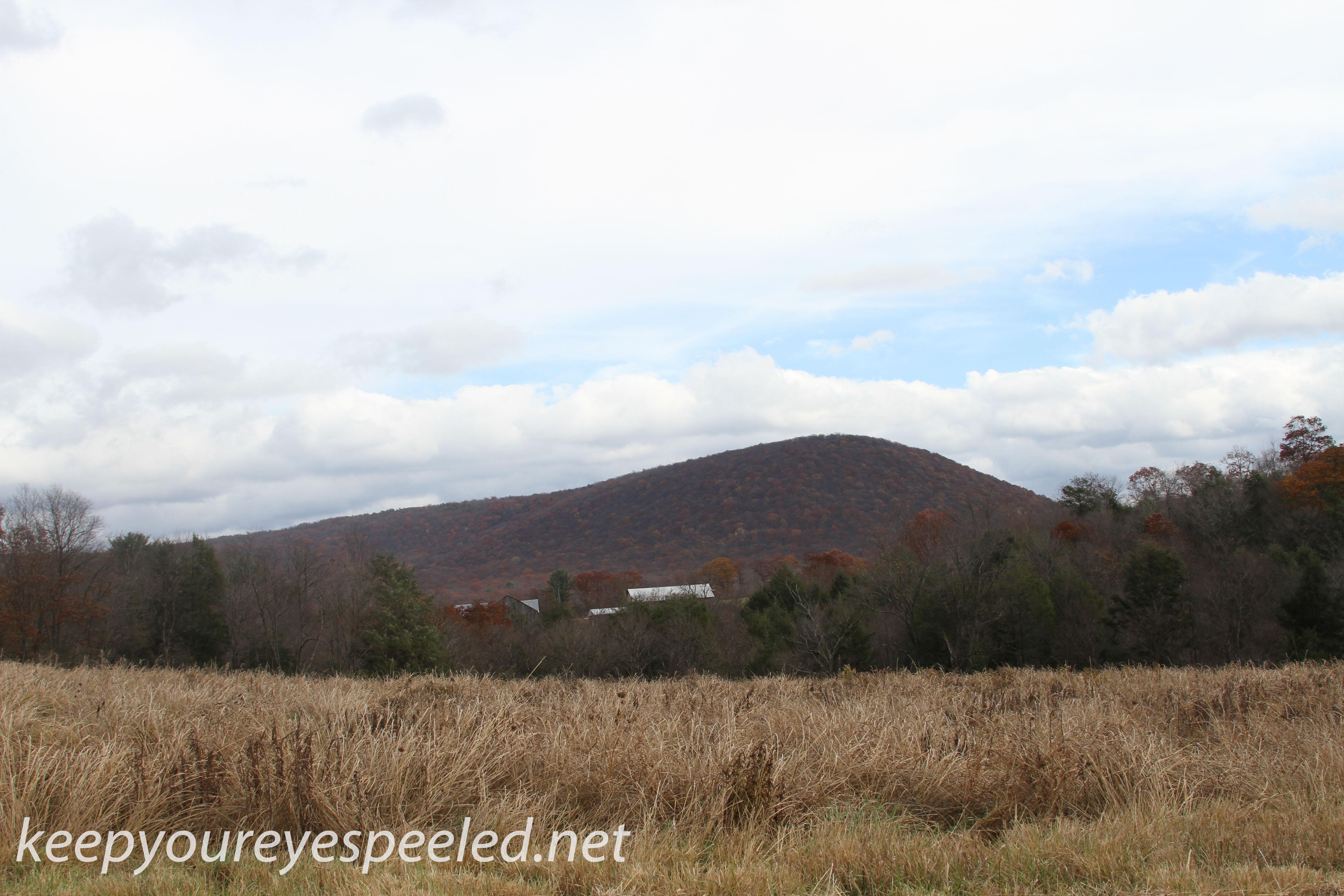 Girard Manor scenery   (14 of 16)