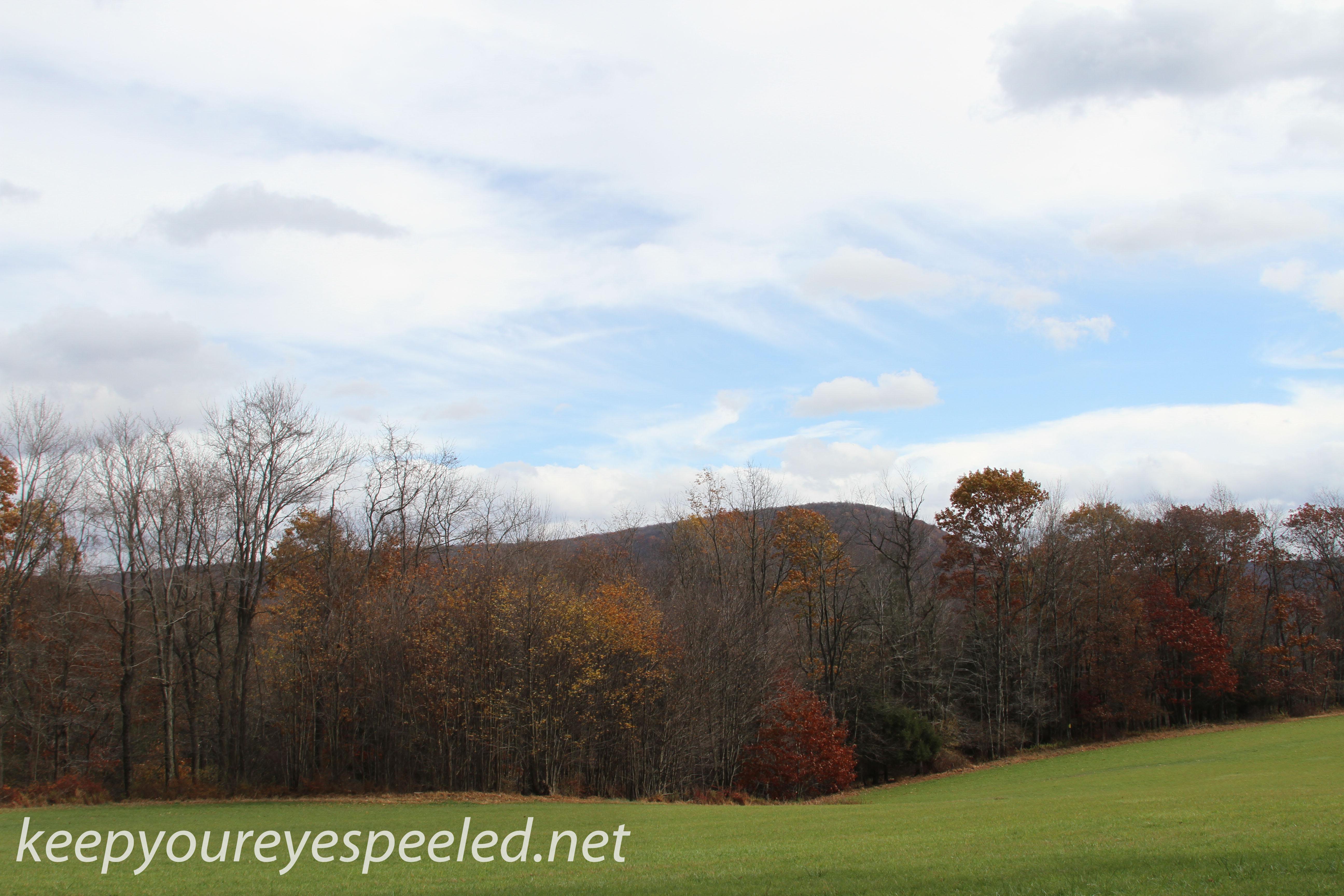 Girard Manor scenery   (15 of 16)