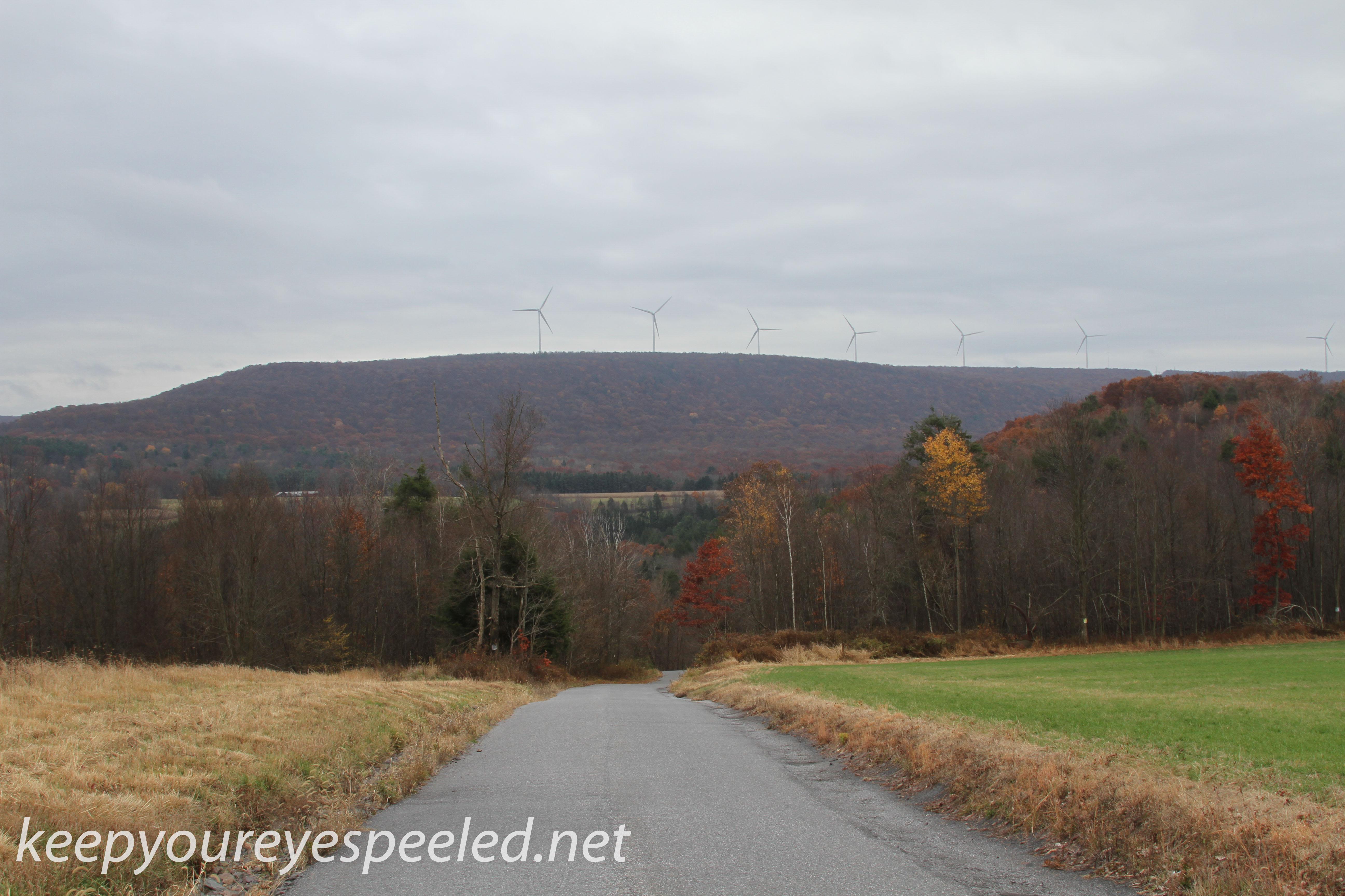 Girard Manor scenery   (3 of 16)