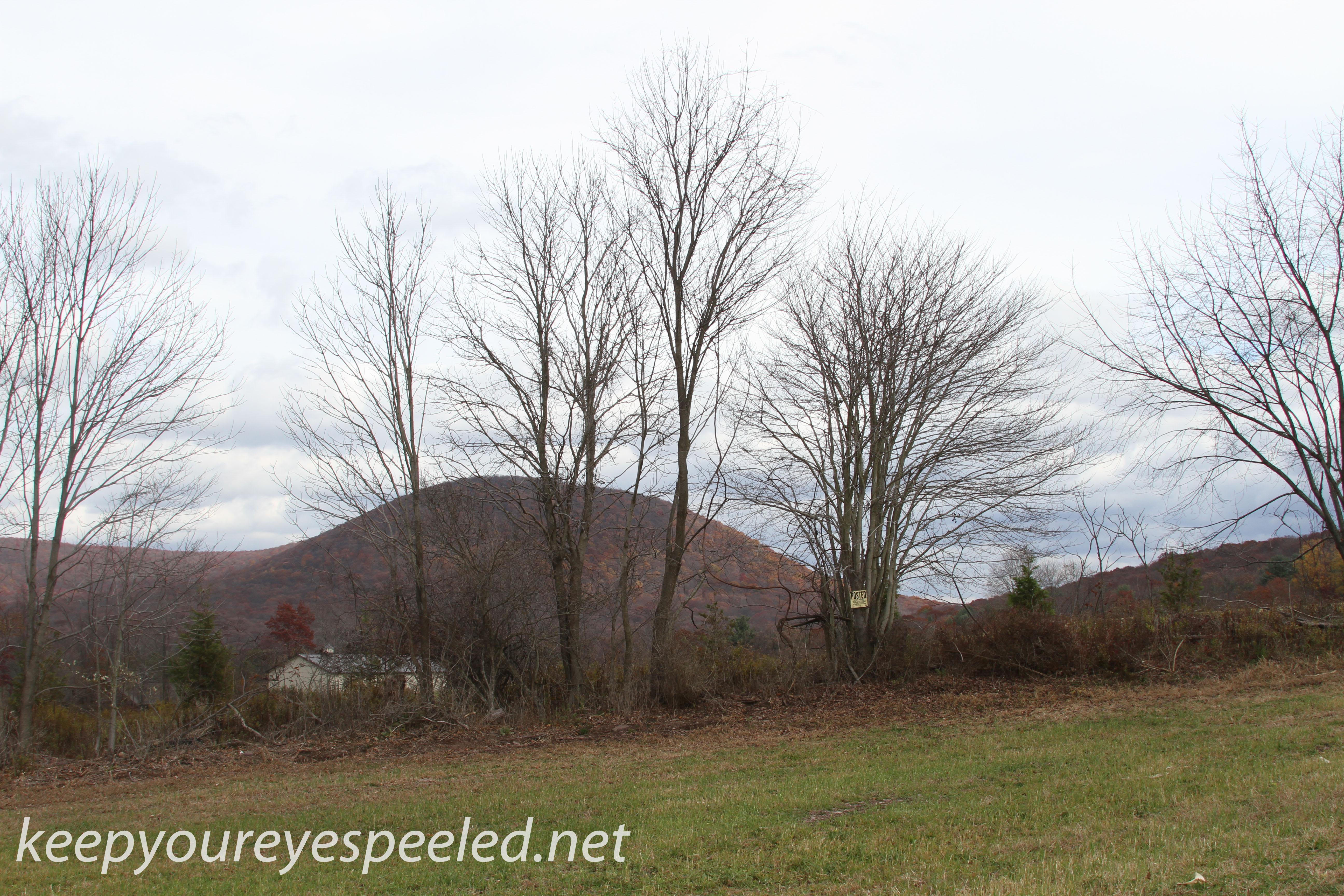 Girard Manor scenery   (9 of 16)