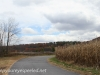Girard Manor scenery   (10 of 16)