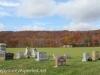 St. John's Cemetery  (3 of 38)