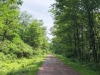 Rail to Trails  (2 of 9)-2