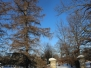 Green Ridge snowstorm Mountain View Cemetery January 24 2016
