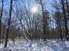 Green Ridge hike (15 of 15)