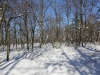 Green Ridge hike (3 of 15)