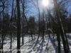 Green Ridge hike (6 of 15)