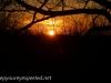 Sunset (12 of 20).jpg