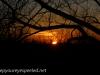 Sunset (15 of 20).jpg