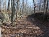 Hazle Brook- Jeddo tunnel hike  (10 of 29)