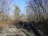 Hazle Brook- Jeddo tunnel hike  (14 of 29)