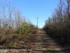 Hazle Brook- Jeddo tunnel hike  (17 of 29)