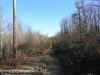 Hazle Brook- Jeddo tunnel hike  (18 of 29)