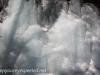Lehigh Gorge (10 of 37).jpg
