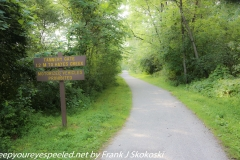 Lehigh Tannery rhododendrons hike July 7 2019