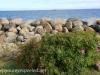 Malmo Sweden morning ocean walk July 29 2015 (17 of 40).jpg