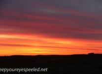Manitoba Cananda  morning drive  (1 of 28)