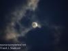 gibbous moon-1