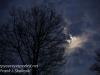 gibbous moon-11