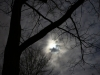 gibbous moon-19