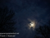 gibbous moon-4