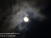 gibbous moon-8