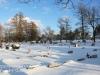 Mountain View Cemetery -5