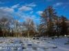 Mountain View Cemetery -6