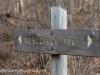 Nescopeck State park  (20 of 50)